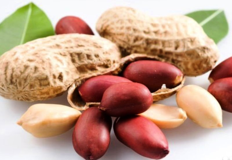 плоды арахиса