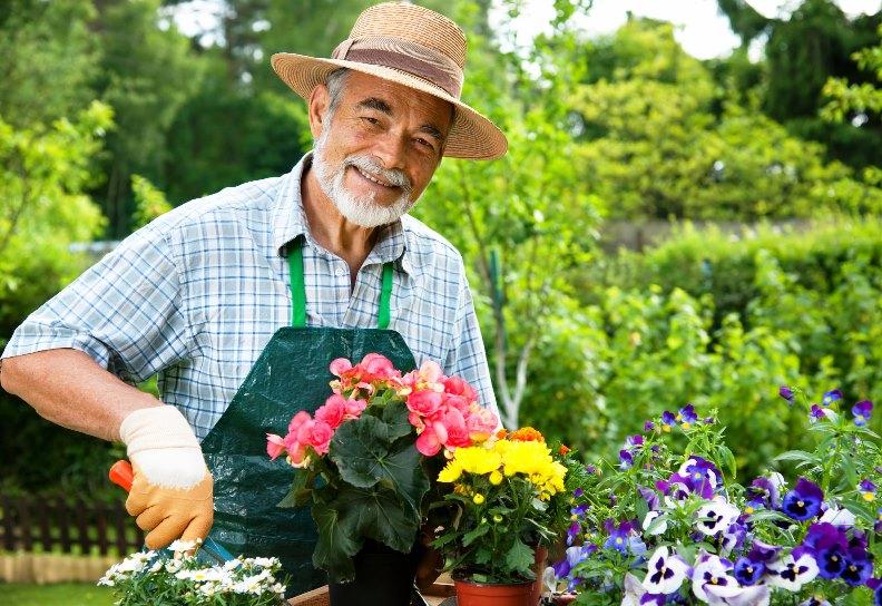 cvetovod-pensioner