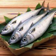 prodazha-ryby