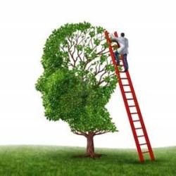 мышление и память