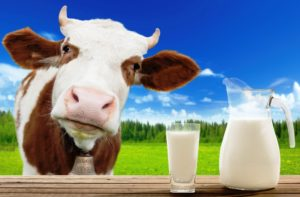 закупка молока