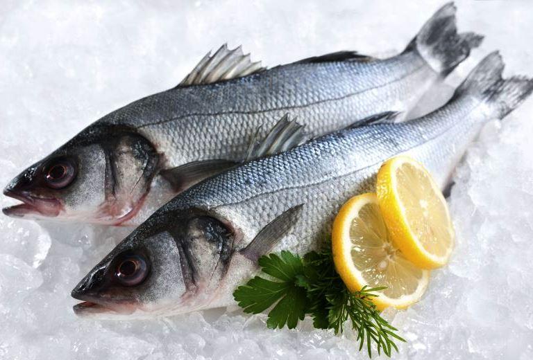 рыбный бизнес