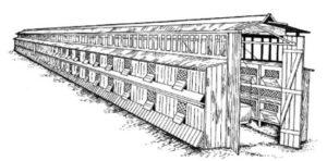 shedovaya-sistema